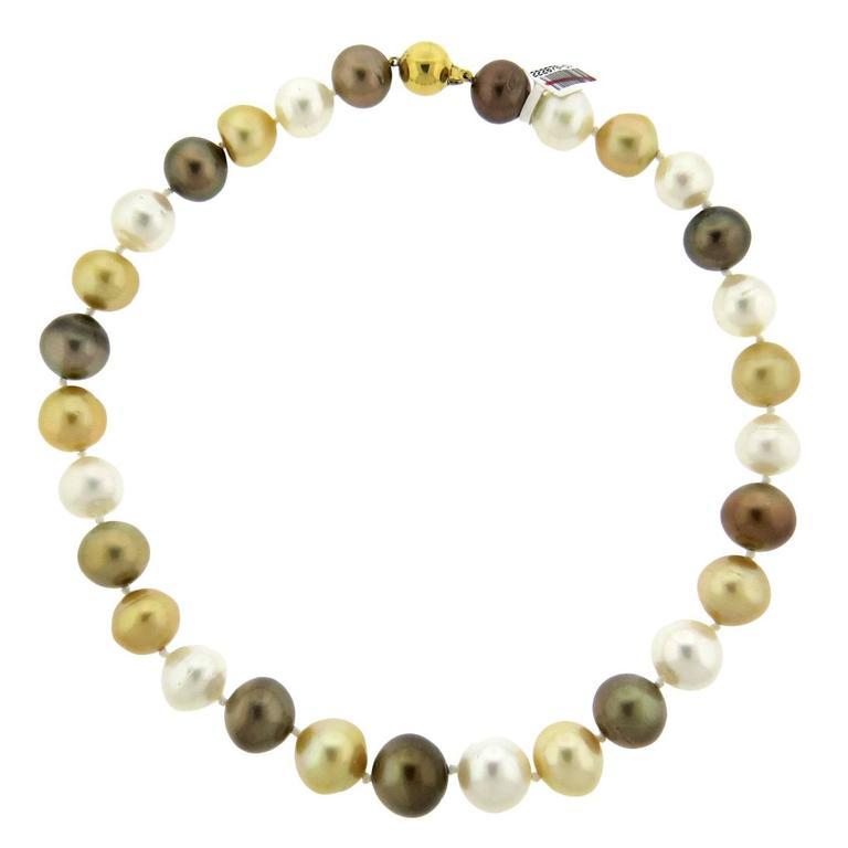 Impressive South Sea Pearl Gold Necklace