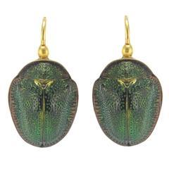 Antique Genuine Beetle Gold Earrings