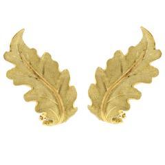 Buccellati Gold Oak Leaf Earrings