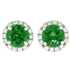 Tsavorite Diamond White Gold Stud Earrings