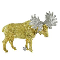 Moose Yellow and White Gold Pin