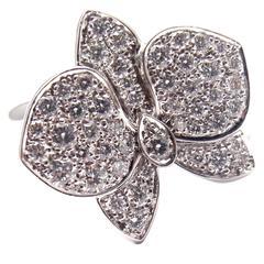 Cartier Caresse D'orchidées Orchid Flower Diamond White Gold Ring