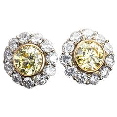 Fancy Yellow GIA Diamond Halo Cluster Earrings Studs