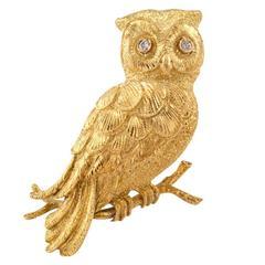 Elegant Diamond Gold Owl Brooch