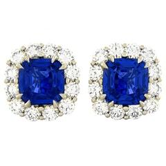 No Heat Sapphire and Diamond Earrings in Platinum AGTA Certificate
