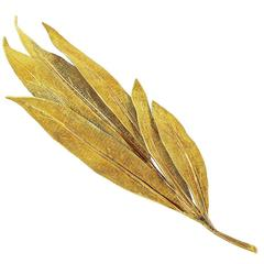 Buccellati Textured Gold Thistle Brooch