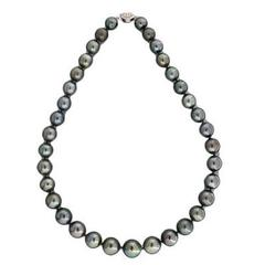 11 to 14.5mm Black South Sea Cultured Pearl Necklace 19 Inches