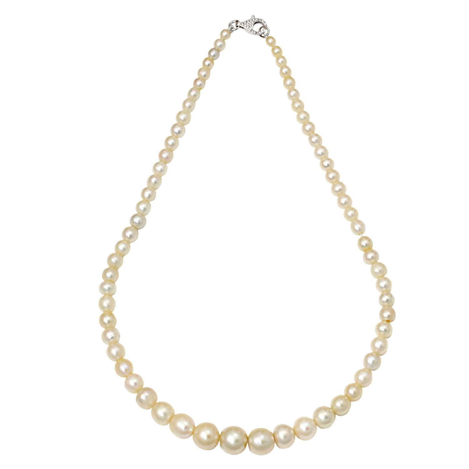 Natural Saltwater Pearl Necklace For Sale At 1stdibs