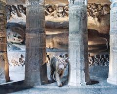 Karen Knorr - Mahassatva's Sacrifice, Ajanta Caves