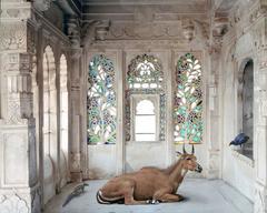 Karen Knorr - A Place like Amravati, Udaipur City Palace, Udaipur
