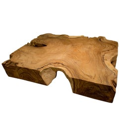 Organic Form Coffee Table