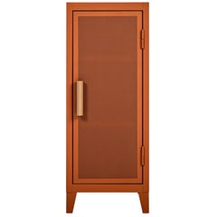 B1 Perforated Low Locker in Terracotta by Chantal Andriot & Tolix