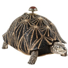 Tortoise Box by Anthony Redmile