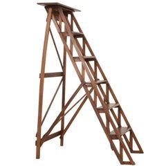 French Early 20th Century Oak Folding Ladder