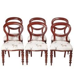 Six Victorian Mahogany Balloon Back Dining Chairs