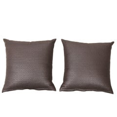 Pair of Textured Silk Throw Pillows