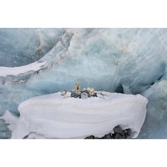 Receding Glacier 1