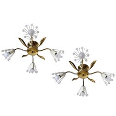 Pair of Austrian Wall or Ceiling Lights Flush Mounts Chandeliers, 1950s