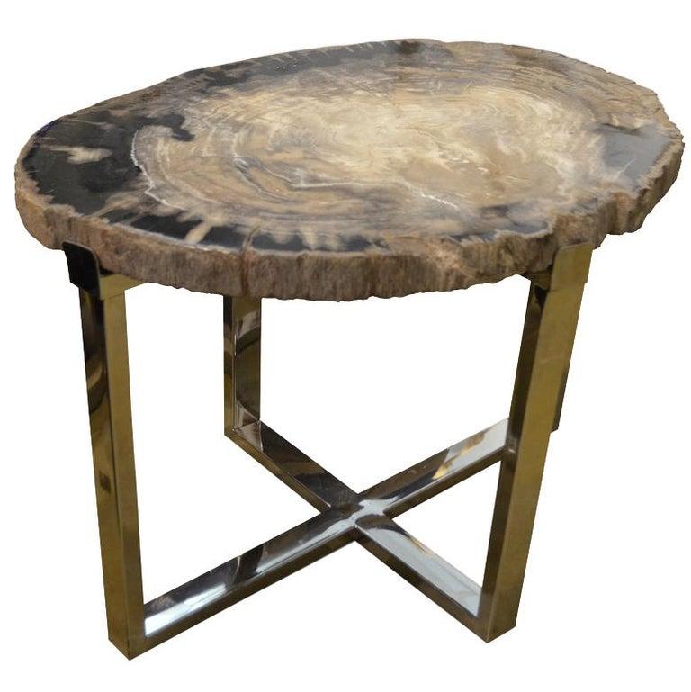 Andrianna Shamaris Petrified Wood Slab Side Table