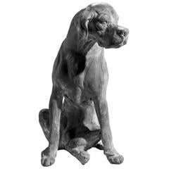 Seated Lead Dog