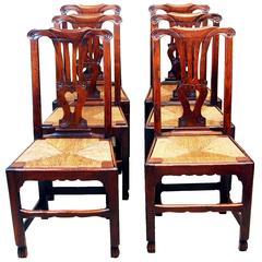 Antique Georgian Set Of Six Oak Dining Chairs