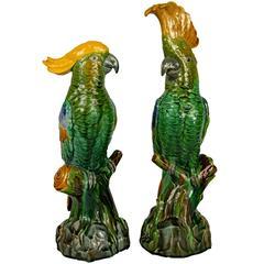 Pair of Minton Majolica Parrots, circa 1890