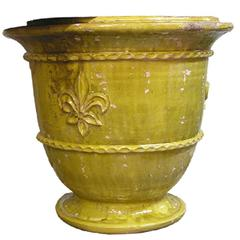 Pair of Classic Yellow French Fleur de Lys Anduze Garden Urn Planters