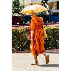 Saffron Robed Monk Photograph