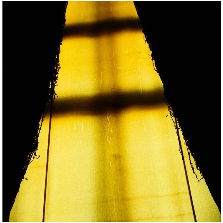 """King Louis' Curtains"" by Michael Stuetz"