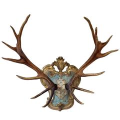 19th C. Red Stag Trophy on Late 18th-Early 19th Century Tyrolean Plaque