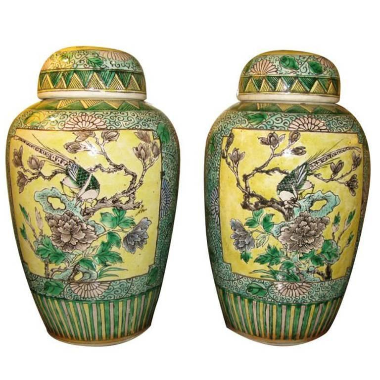 Pair of Chinese 19th Century Bisque Jars with Lids For Sale