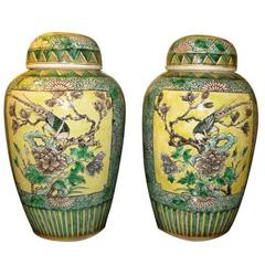 Pair of Chinese Bisque Jars with Lids