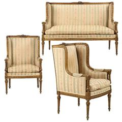 Three-Piece Parlor Suite of Settee with Two Armchairs in Louis XVI Style