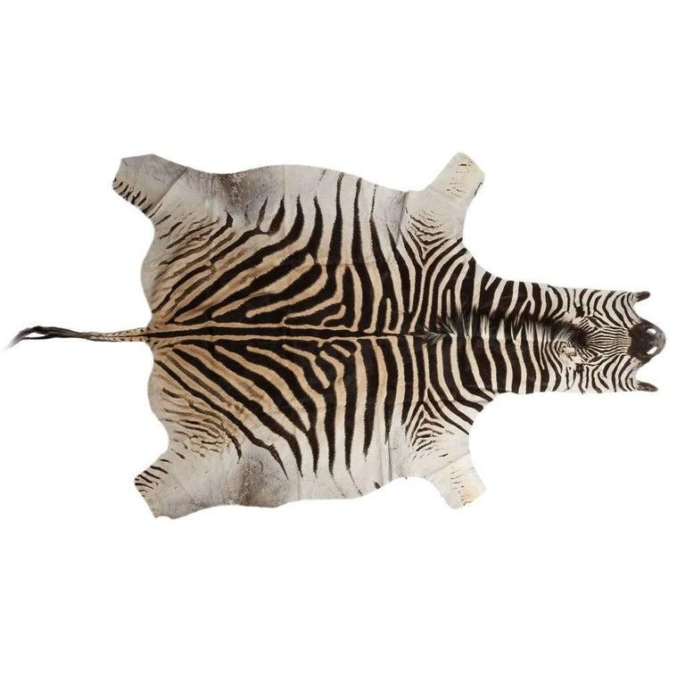 Genuine Large African Burchell Zebra Skin For Sale