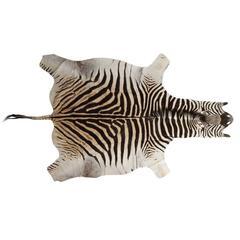 Genuine Large African Burchell Zebra Skin