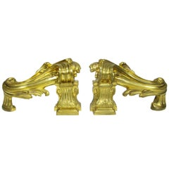 Very Fine Pair of French 19th Century Louis XV Style Gilt-Bronze Chenets