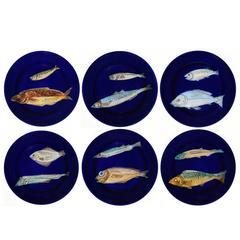 Set of Six Blue Fish Dessert Plates by Italian Workshop Este Ceramiche