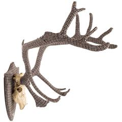 The Eclectic Set of Harris Tweed Wrapped Scottish Deer Antlers.