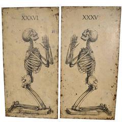 Pair of Large Skeleton Paintings on Metal