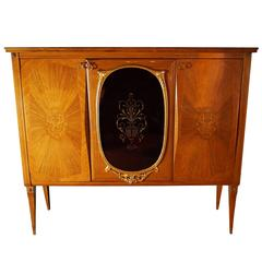 Rosewood Cabinet in the style of Paola Buffa
