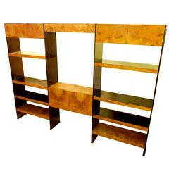 Smoked Lucite and Burl Olive Ash Wall Unit