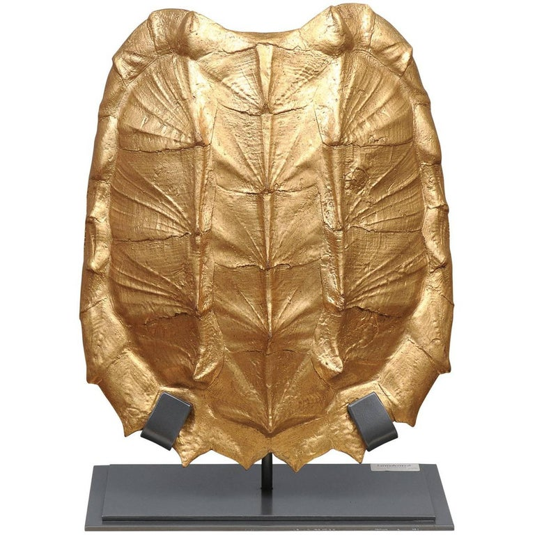 Snapping Turtle Shell on Stand-Gold Leaf
