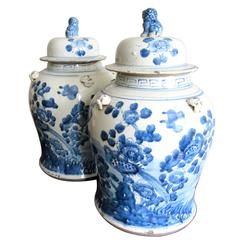 Pair of Chinese Blue and White Porcelain Ginger Jars