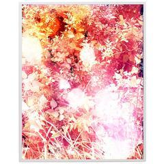 Tealia Ellis-Ritter, Crimson, 2015