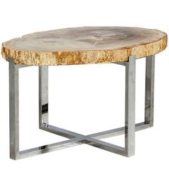 Large Petrified Wood Slab Accent Table