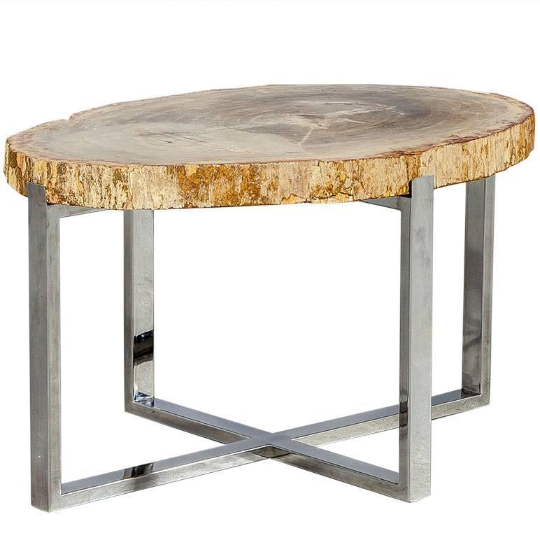 large petrified wood slab accent table for sale at 1stdibs. Black Bedroom Furniture Sets. Home Design Ideas