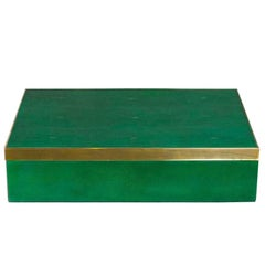Genuine Shagreen Extra Large Box in Vibrant Green with Brass Trim