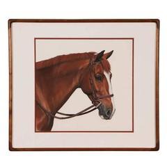 Gouache Horse Portrait by Jocelyn Sandor, American, 20th Century