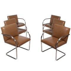 Set of Six Brno Chairs by Mies van der Rohe for Knoll