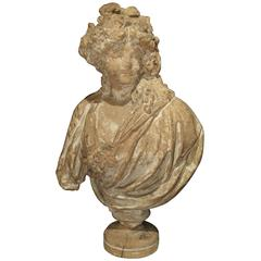 19th Century French Terra Cotta Bust of a Woman